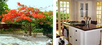 piscadera-bay-resort3